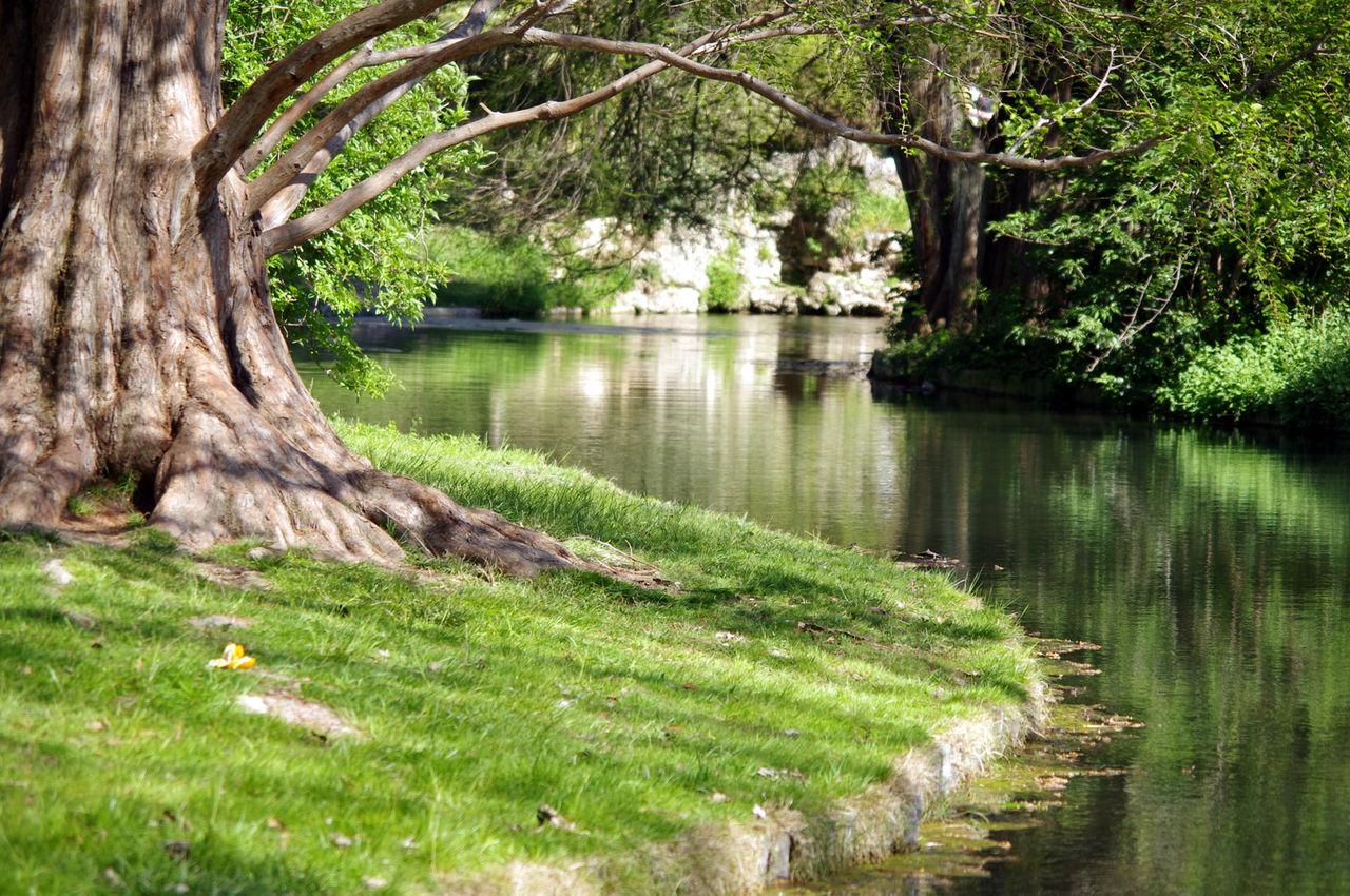 Visite guidée du château Borély et de son parc